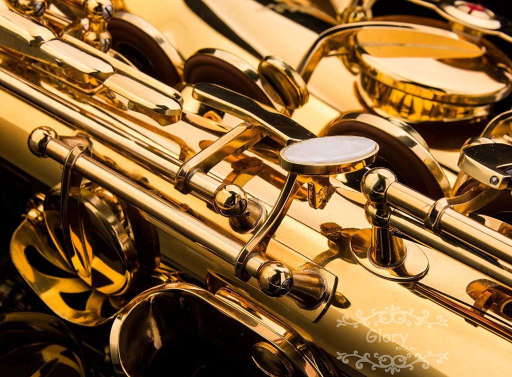 Glory Professional Alto Eb SAX Saxophone Gold Laquer Finish