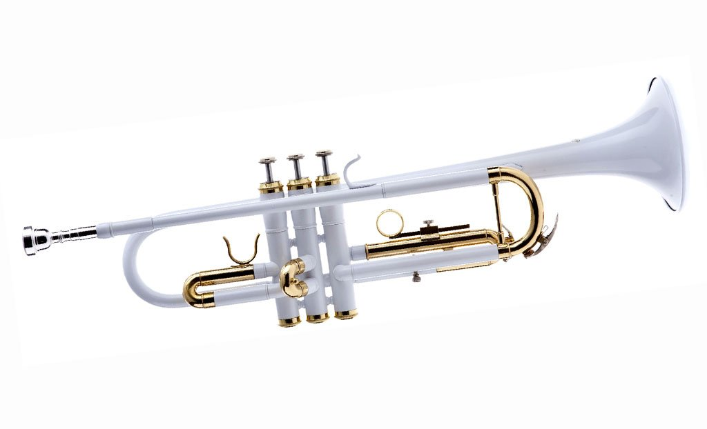 Hawk WD-T313 - for Students and Intermediate Players