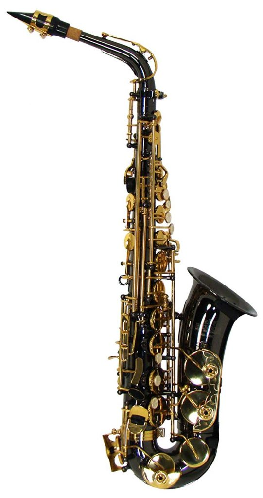 Roy Benson RBAS202K Eb Student Alto Saxophone, Black Body with Gold Keys