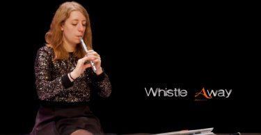 tin-whistle-ornamentation-explained
