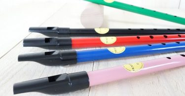tin-whistle-faq